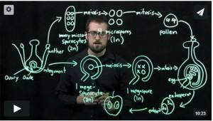 Geoff_video